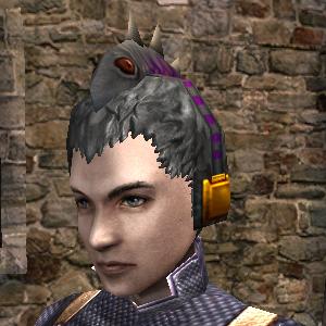 Lizard Head-P