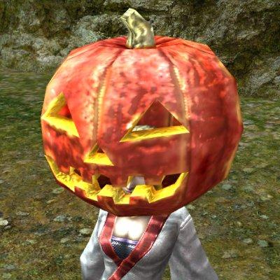 かぼちゃの被り物(冬)