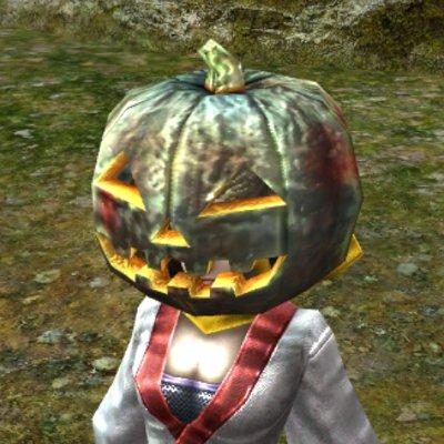 かぼちゃの被り物(夏)
