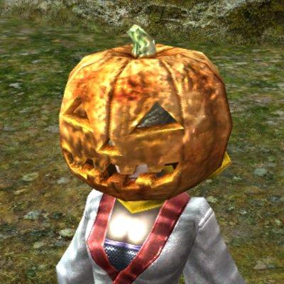 かぼちゃの被り物(春)