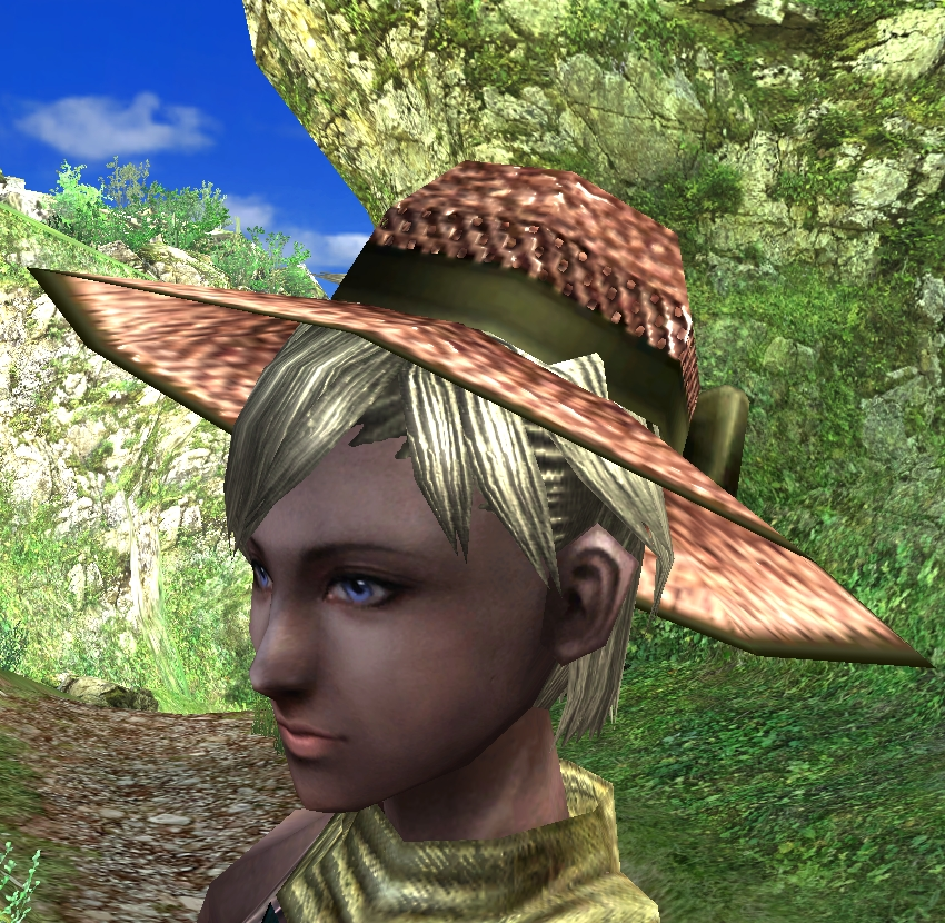 Straw Hat (B)